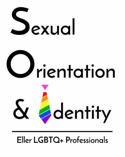 Sexual Orientation and Identity | Eller LGBTQ+ Professionals